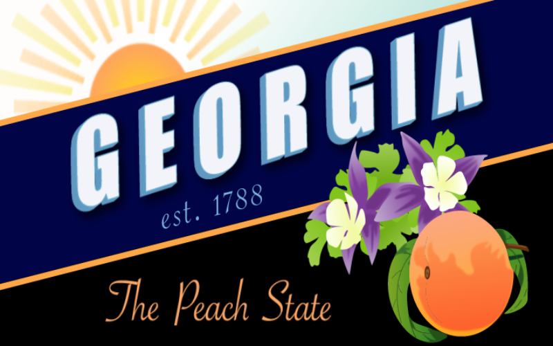 Georgia League of the South